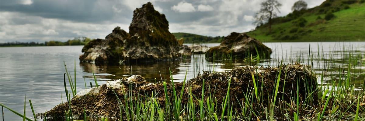 Lough Gur Lake