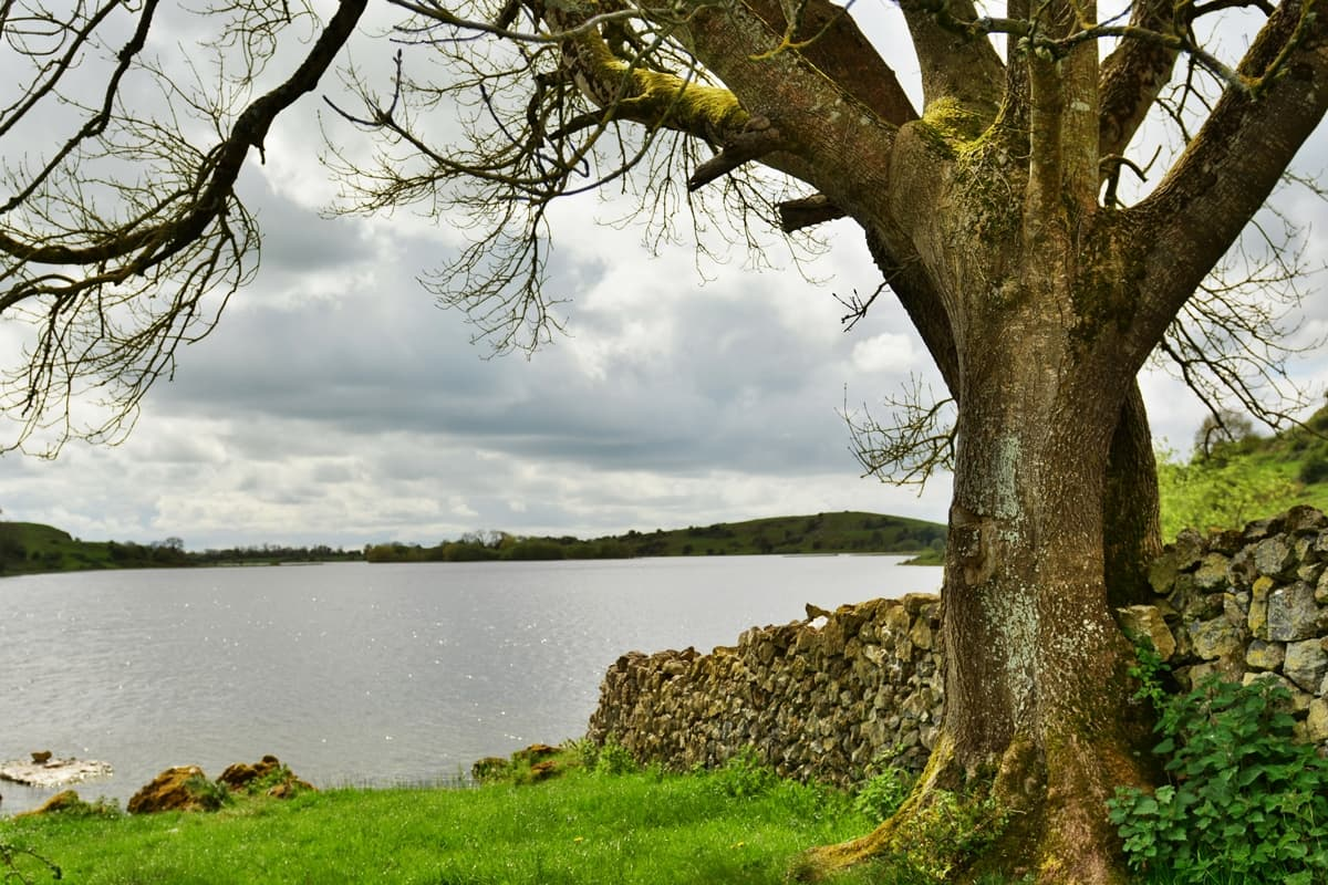 37 Lough Gur Alan Noonan Photography