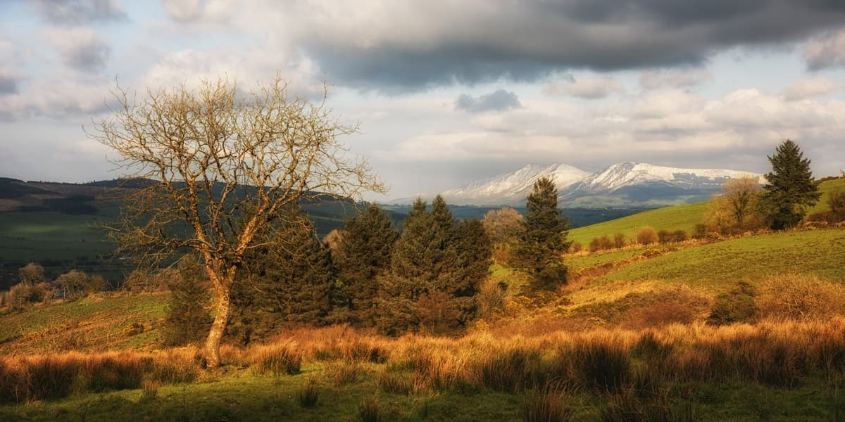 Ballyhoura Way Galtee View 1