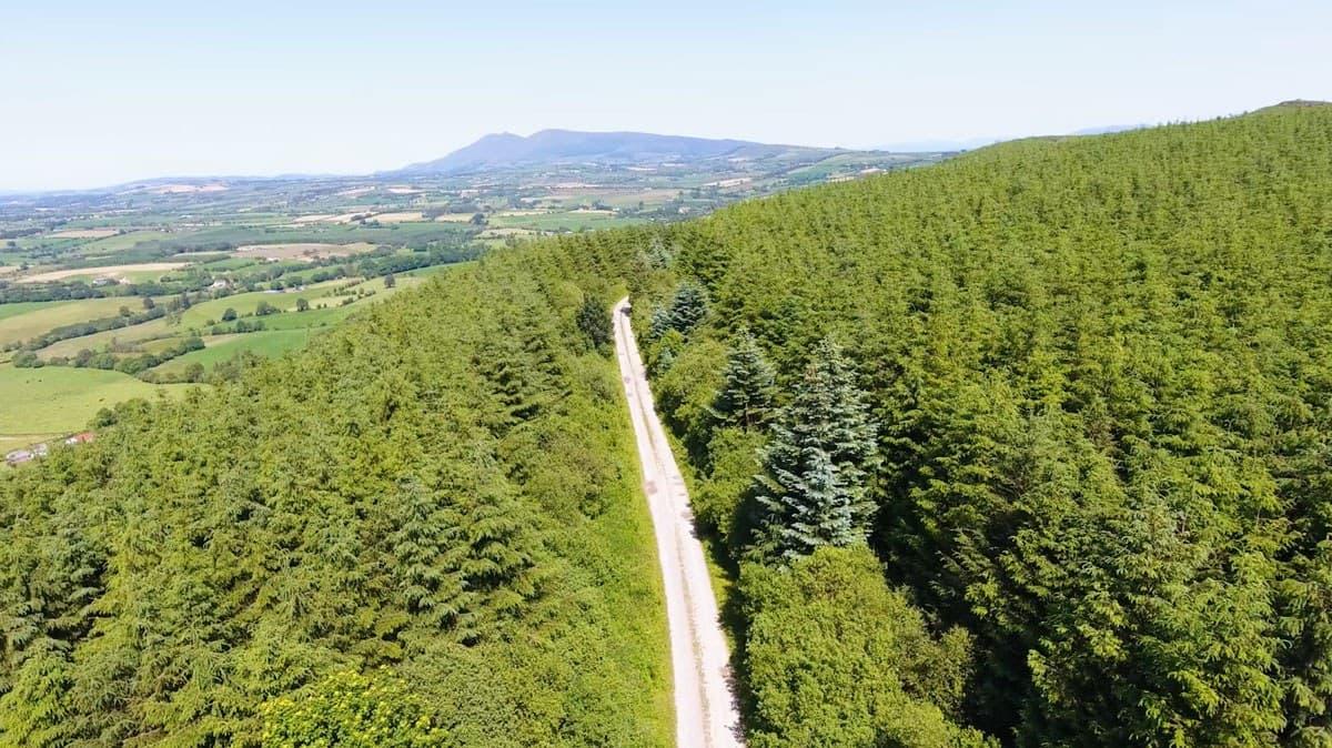 Castlegale Loop 1