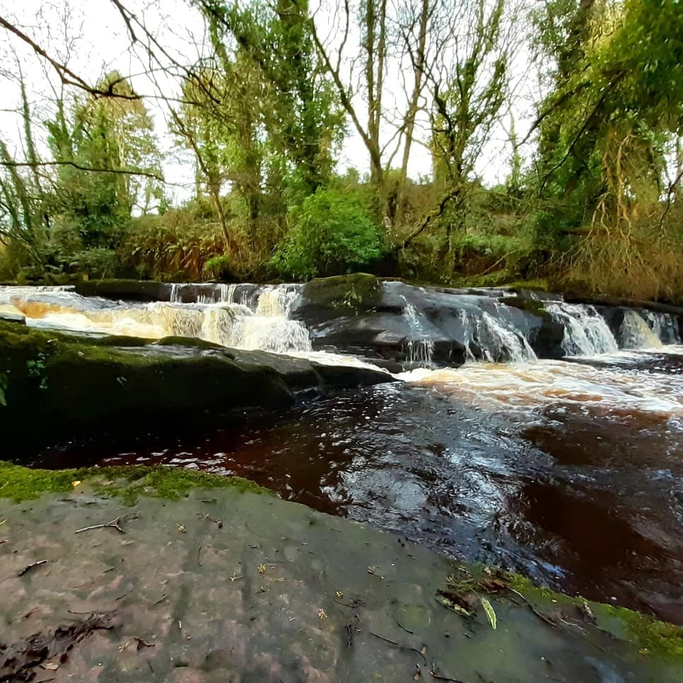 Clare Glens Loop Walk 2