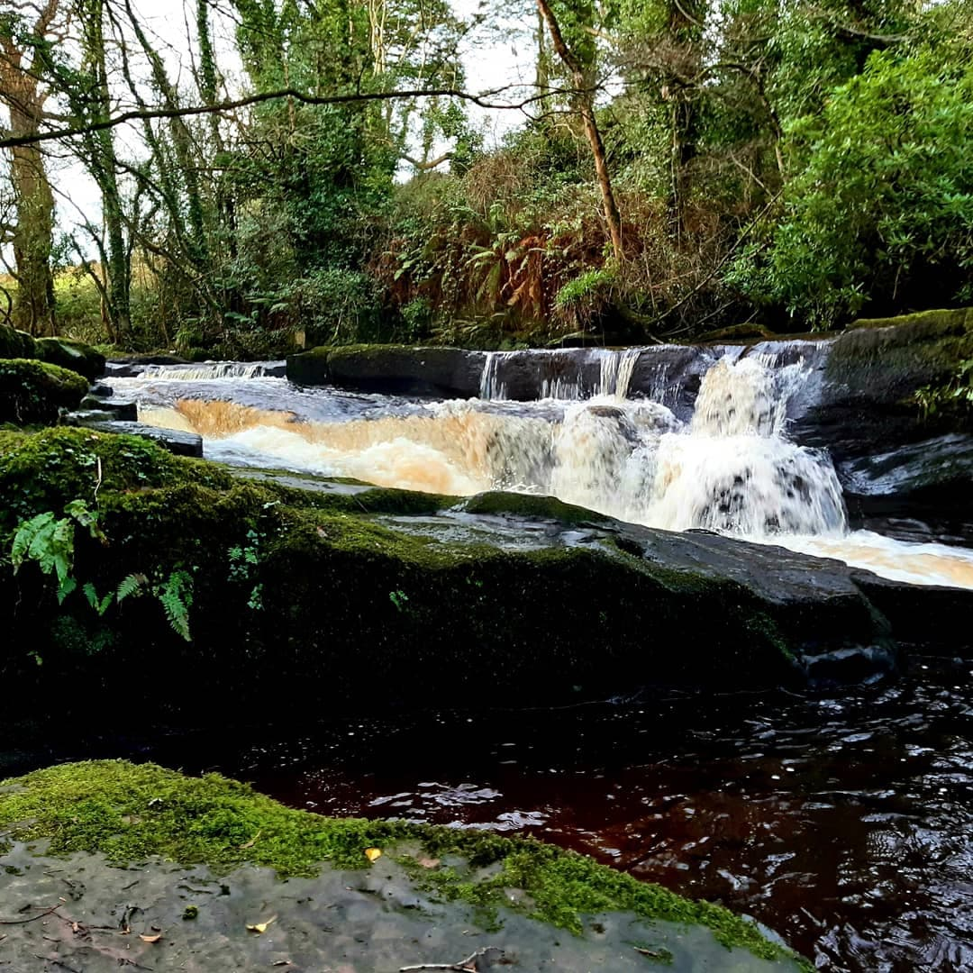 Clare Glens Loop Walk 4