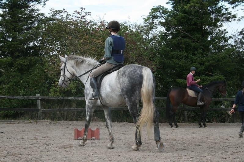 Hillcrest Equestrian 2