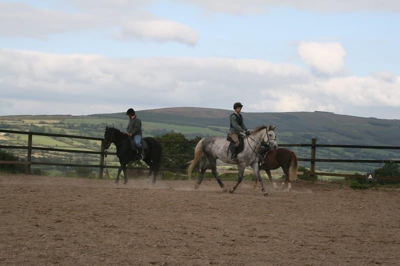 Hillcrest Equestrian 4