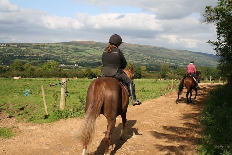 Hillcrest Equestrian 9