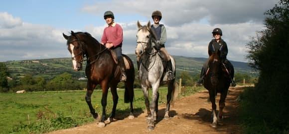 Hillcrest Equestrian Centre