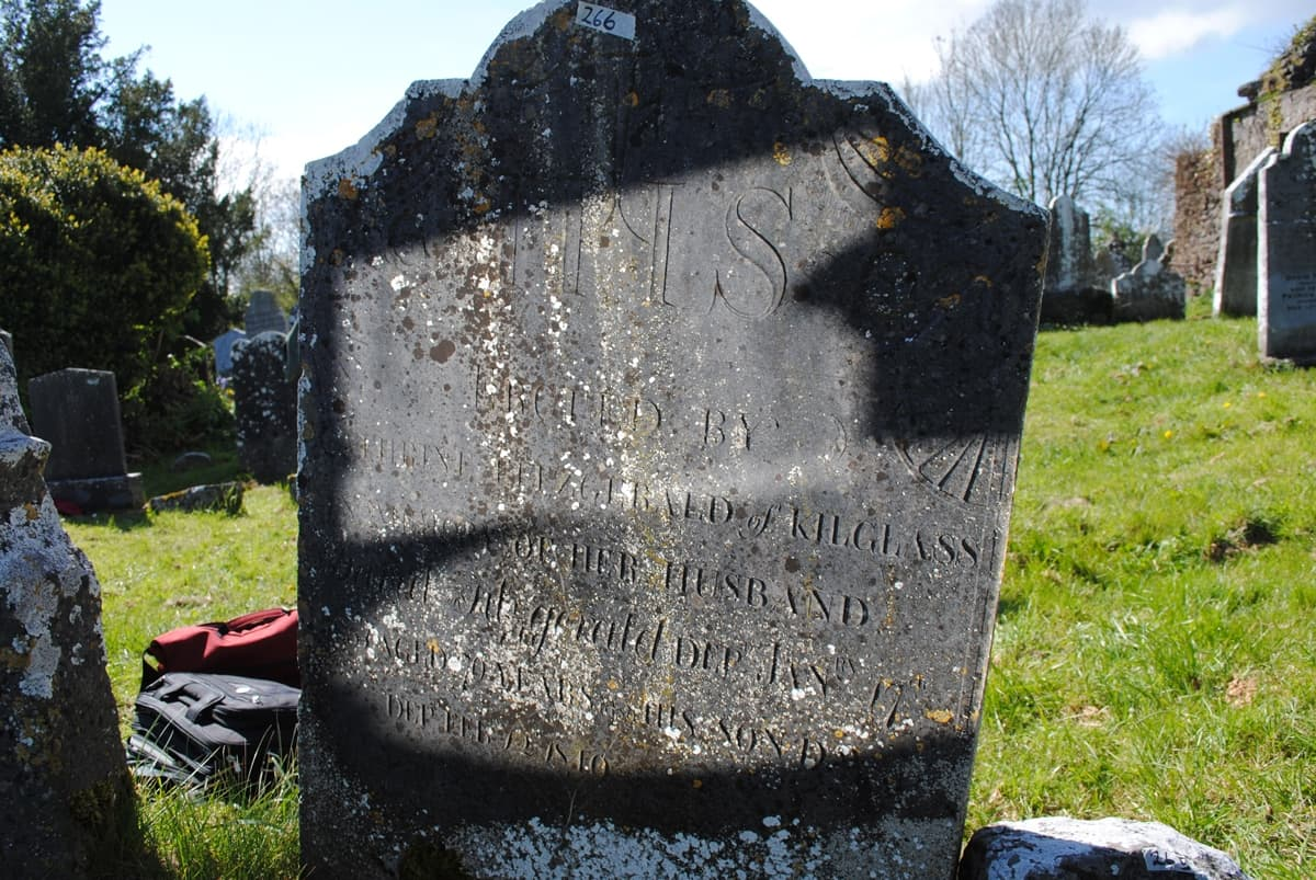 Historic Graves 1