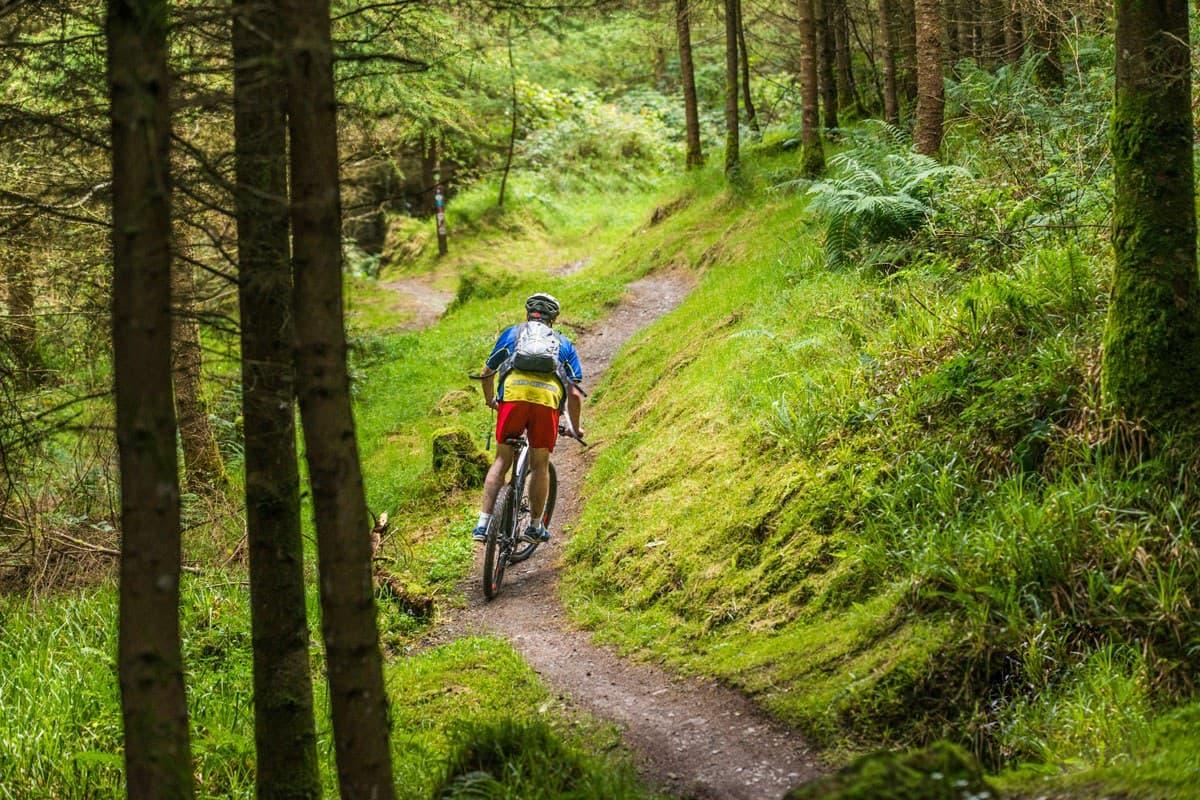 Mountain Biking 4