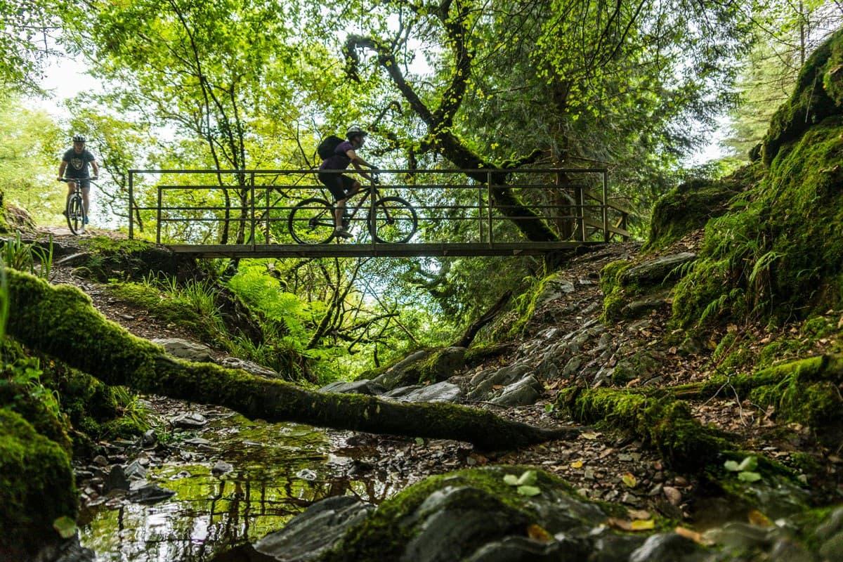 Mountain Biking 6