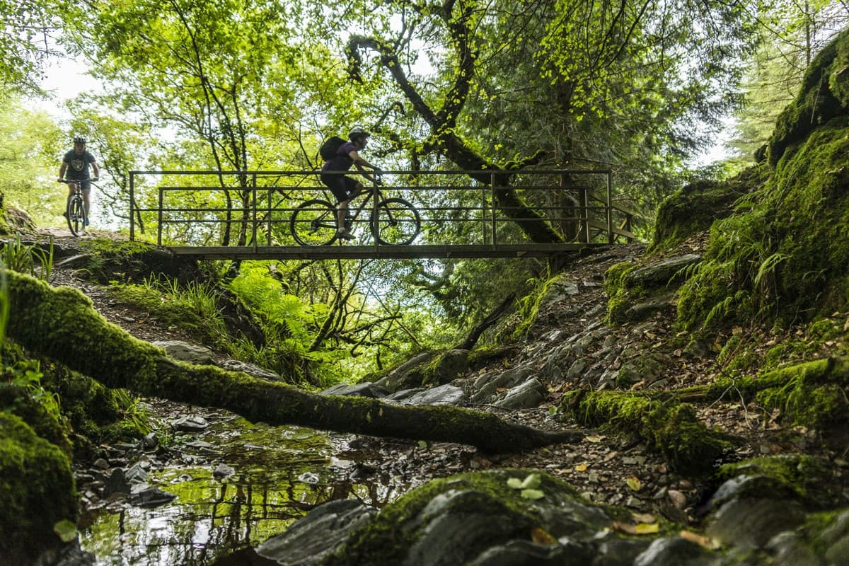 Mountain Biking Ballyhoura