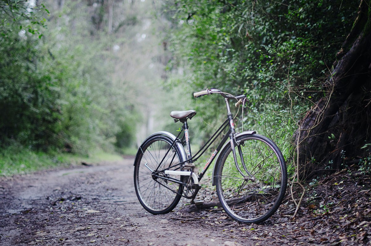 Road Cycling 6