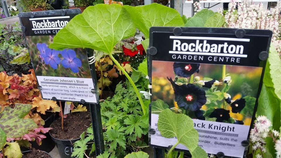 Rockbarton Garden Centre banner 3
