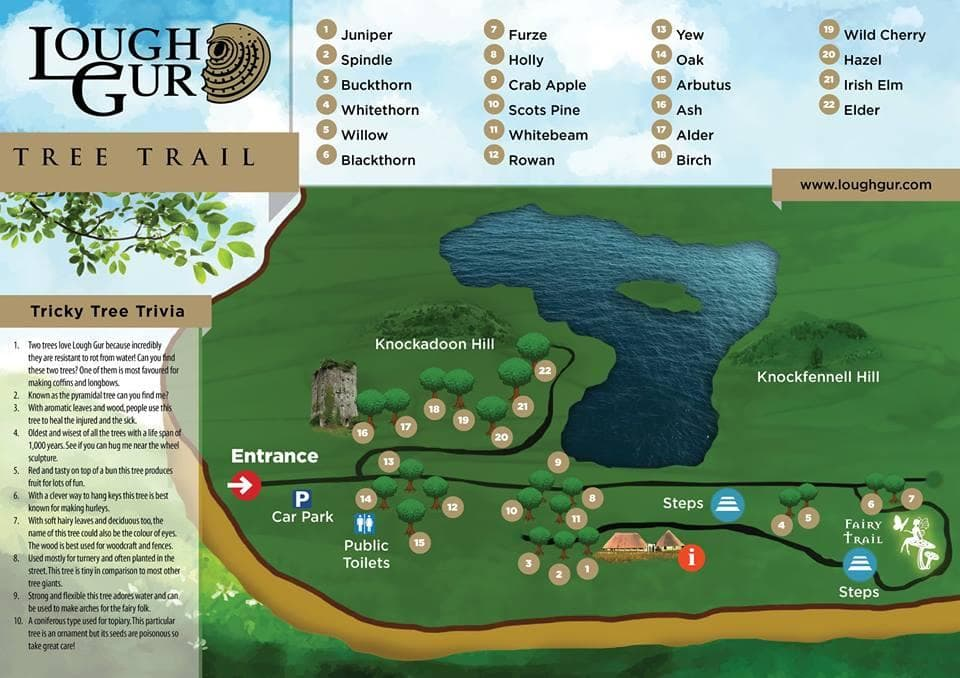 TREE TRAIL MAP Lough Gur