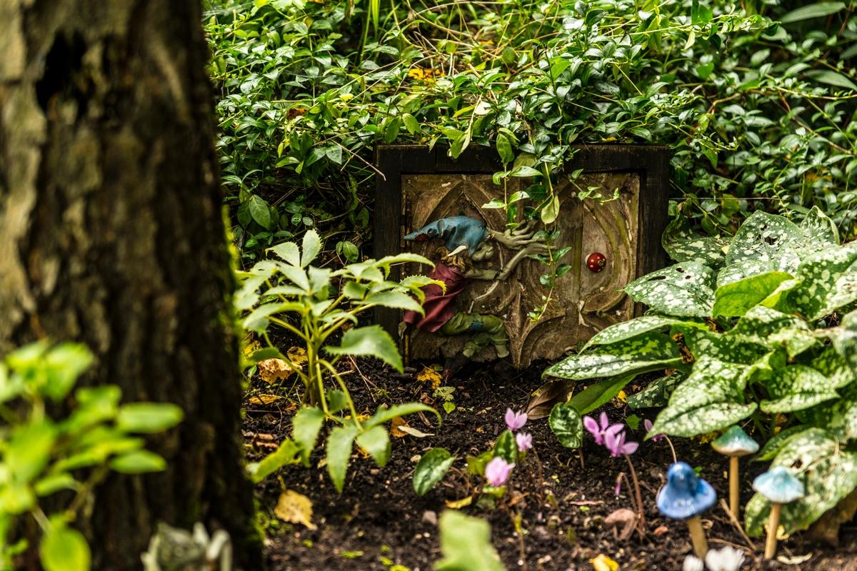 Terra Nova Garden 5