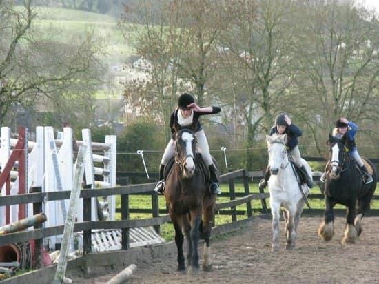 Boskill equestrian centre 1