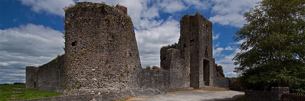 Liscarroll Castle